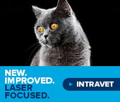 Intravet