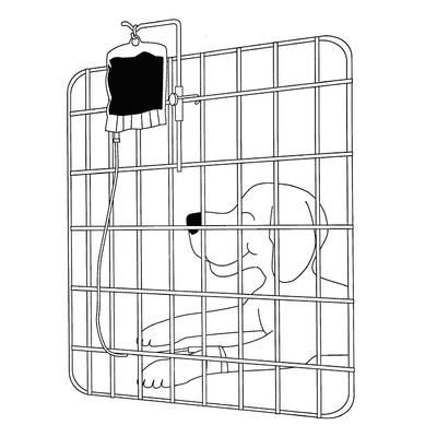 IV Cage-Mounted Bag Holder