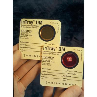 InTray DM Test Kit