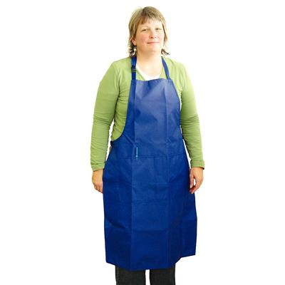 Blue Nylon Apron