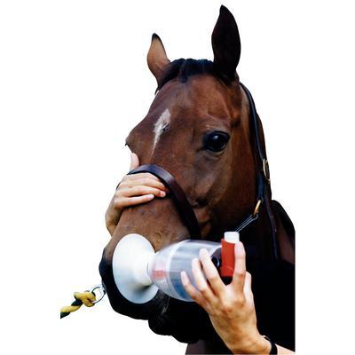 Equine Haler