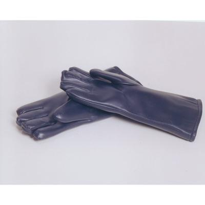 Radiation Concepts X-ray Gloves