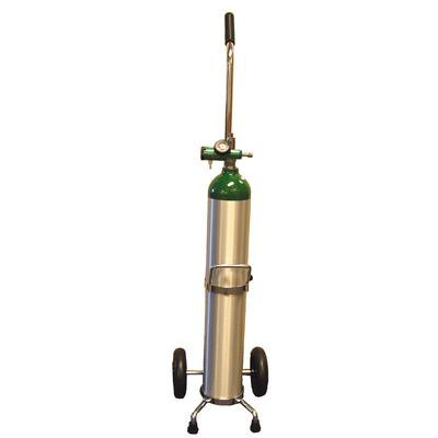 Portable Oxygen Delivery System