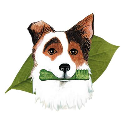Canine Greenies® Hip & Joint Care Dental Chews