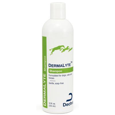 DermaLyte Shampoo