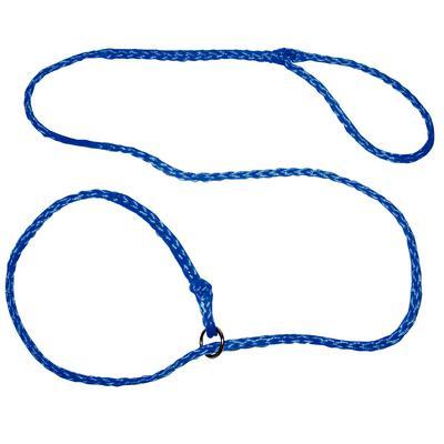 Blue Braided Dog Lead