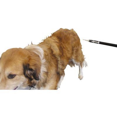 Safety Stick Pole Syringe