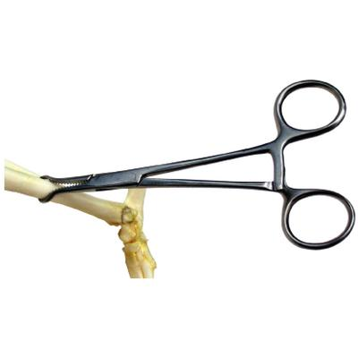 Extra-Small Bone Clamp