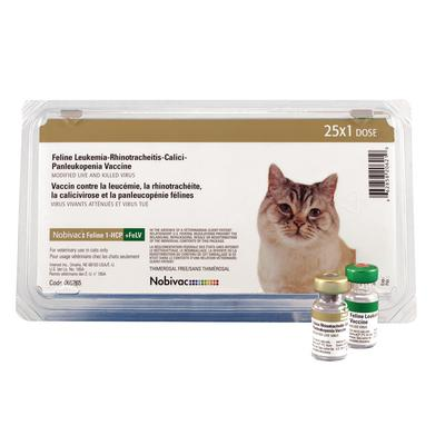 Nobivac® Feline 1-HCP+FELV