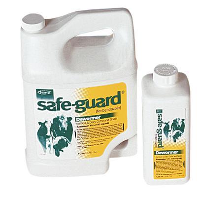 Safe-Guard® Suspension