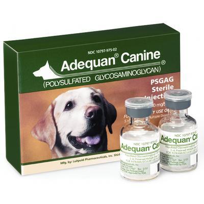 Adequan® Canine