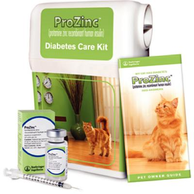 Prozinc Diabetes Care Kit