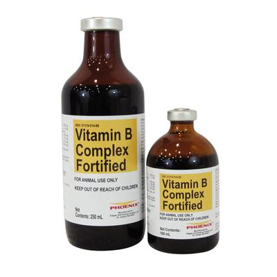 Vitamin B Complex Fortified