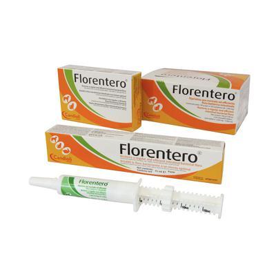 Florentero