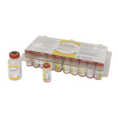 Fel-O-Vax® IV + CaliciVax™