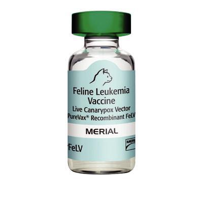 Purevax™ Recombinant® Leukemia
