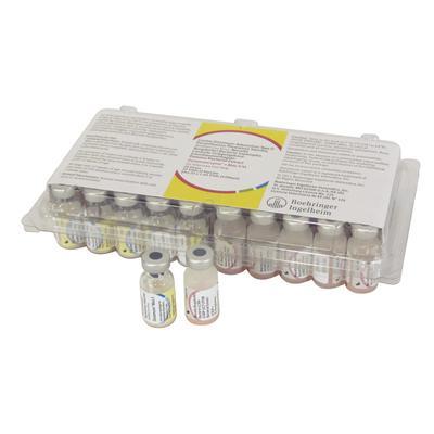 Duramune® Lyme + Max 5/4L