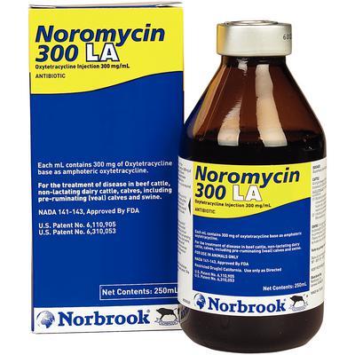 Noromycin 300 LA Injectable