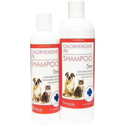 Chlorhexidine Gluconate 4% Shampoo + PS
