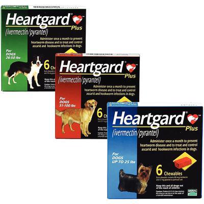 Heartgard® Plus Chewables Canine