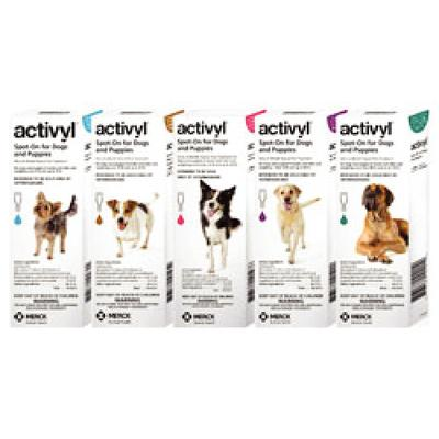 Activyl® for Dogs