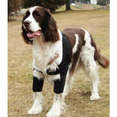 DogLeggs® Shoulder Stabilization System