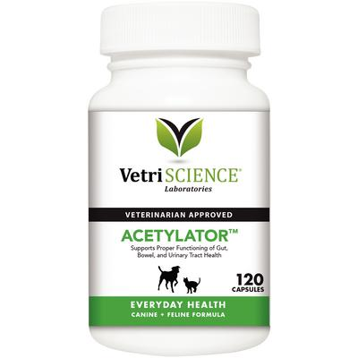 Acetylator Capsules for Dogs and Cats