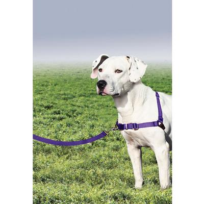 Easy Walk™ Harness