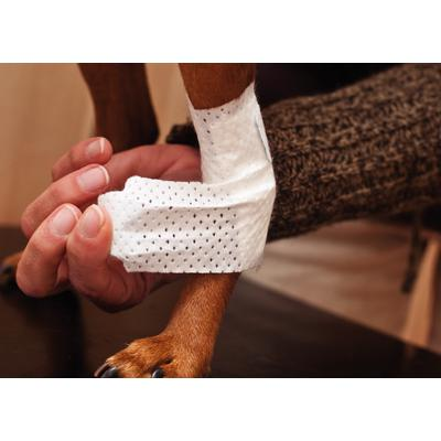 PawFlex™ Assorted Bandages