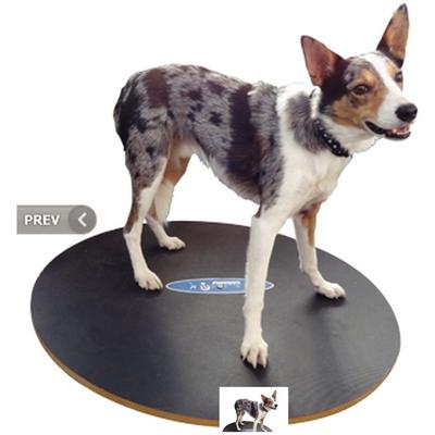 FitPAWS® Wobble Board