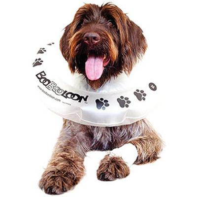 Kong Cushion Recovery Collars
