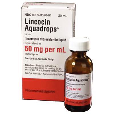 Lincocin® Aquadrops