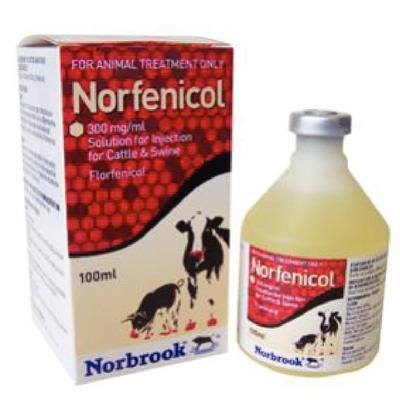 Norfenicol Injection 300 mg/ml