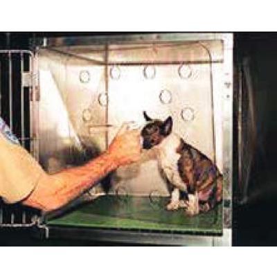 Cat/Small Animal Shield