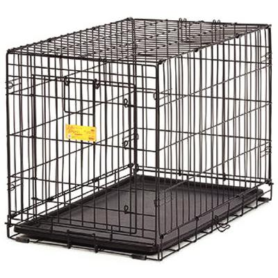 Life Stages ACE Single Door Dog Crates