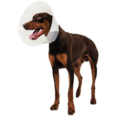 Patterson Veterinary Click Plus Elizabethan Collar