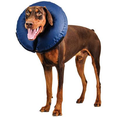 Patterson Veterinary Snug Fit Inflatable Elizabethan Collar