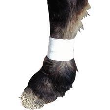 Leg Dressing Holder