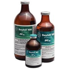 Baytril® 100 Injectable
